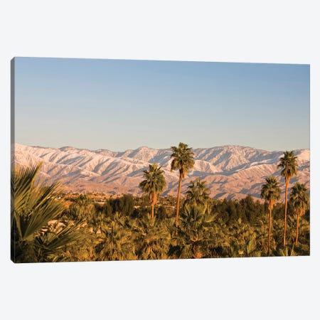 USA, California, Palm Springs. Palms and San Bernardino Mountains, sunrise. Canvas Print #WBI183} by Walter Bibikow Canvas Art Print