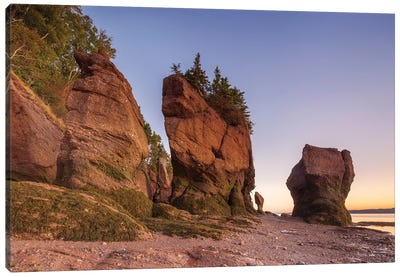 Canada, New Brunswick, Hopewell Rocks. Flowerpot Rocks formed by the great tides of the Bay of Fundy. Canvas Art Print