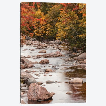 Canada, Nova Scotia, Cabot Trail. Neils Harbour, Cape Breton Highlands National Park, small stream in autumn. Canvas Print #WBI195} by Walter Bibikow Canvas Art Print