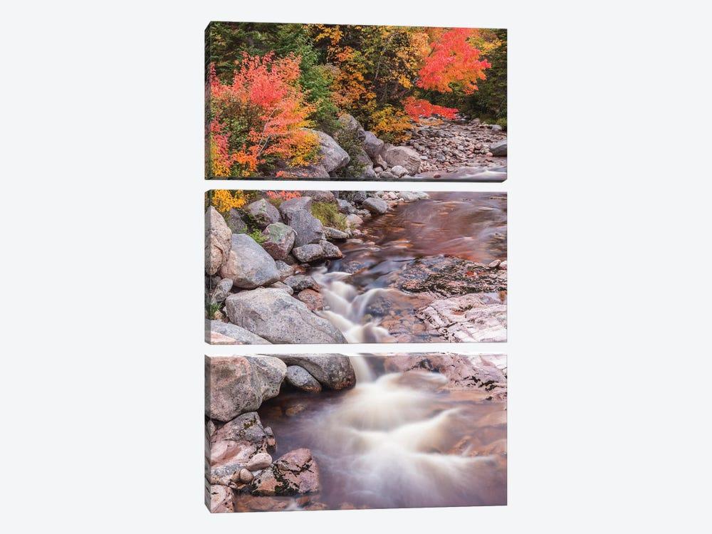Canada, Nova Scotia, Cabot Trail. Neils Harbour, Cape Breton Highlands National Park, small stream in autumn. by Walter Bibikow 3-piece Art Print