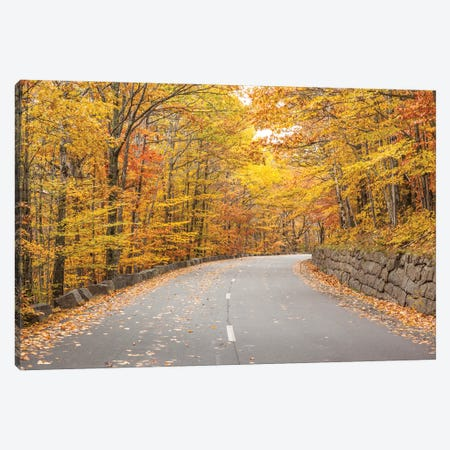 USA, Maine, Mt. Desert Island. Acadia National Park road. Canvas Print #WBI201} by Walter Bibikow Canvas Artwork
