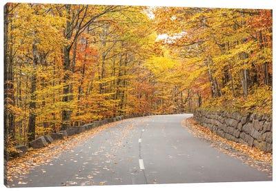 USA, Maine, Mt. Desert Island. Acadia National Park road. Canvas Art Print