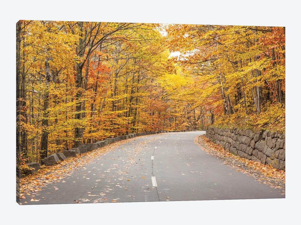 USA, Maine, Mt. Desert Island. Acadia National Park road. by Walter Bibikow 1-piece Canvas Print