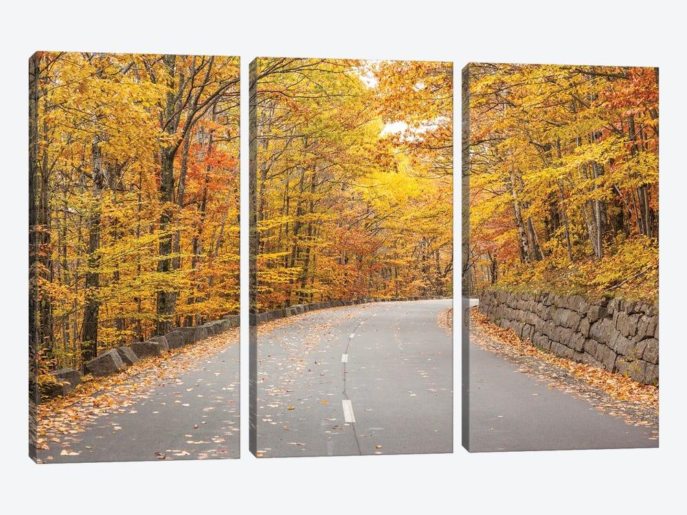 USA, Maine, Mt. Desert Island. Acadia National Park road. by Walter Bibikow 3-piece Canvas Print