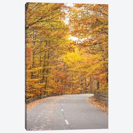 USA, Maine, Mt. Desert Island. Acadia National Park road. Canvas Print #WBI202} by Walter Bibikow Canvas Artwork