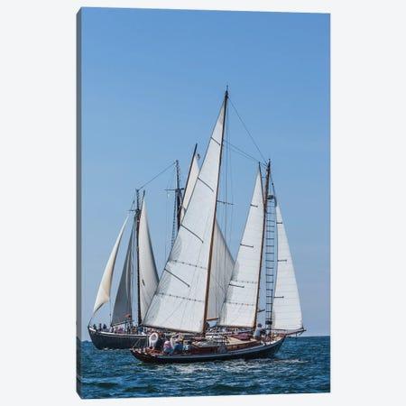USA, Massachusetts, Cape Ann, Gloucester. Gloucester Schooner Festival, schooner parade of sail. Canvas Print #WBI210} by Walter Bibikow Canvas Print