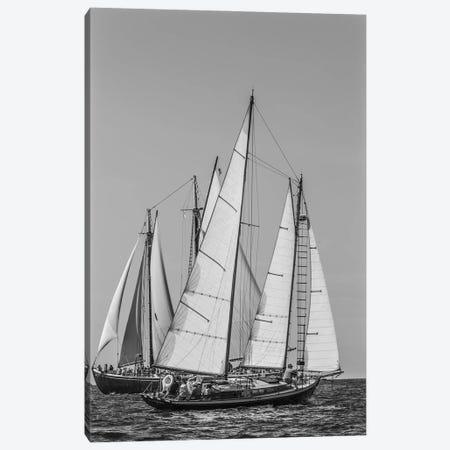 USA, Massachusetts, Cape Ann, Gloucester. Gloucester Schooner Festival, schooner parade of sail. Canvas Print #WBI211} by Walter Bibikow Canvas Print