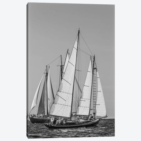 USA, Massachusetts, Cape Ann, Gloucester. Gloucester Schooner Festival, schooner parade of sail. Canvas Print #WBI211} by Walter Bibikow Canvas Print