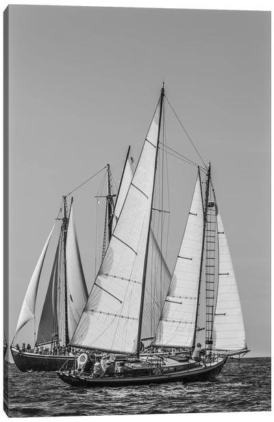 USA, Massachusetts, Cape Ann, Gloucester. Gloucester Schooner Festival, schooner parade of sail. Canvas Art Print
