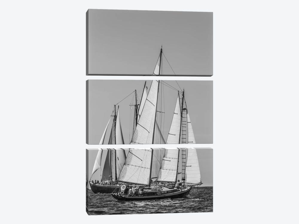 USA, Massachusetts, Cape Ann, Gloucester. Gloucester Schooner Festival, schooner parade of sail. by Walter Bibikow 3-piece Canvas Art