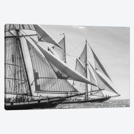USA, Massachusetts, Cape Ann, Gloucester. Gloucester Schooner Festival, schooner parade of sail. Canvas Print #WBI212} by Walter Bibikow Art Print