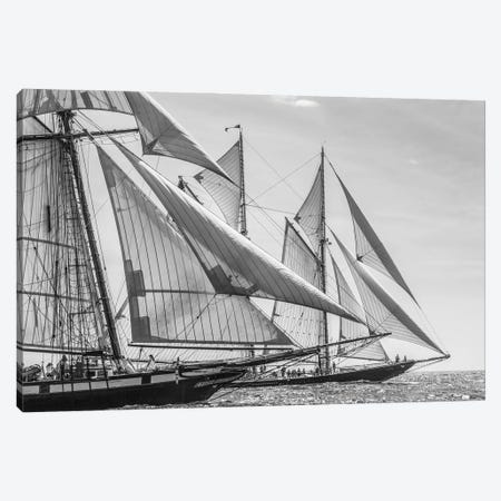 USA, Massachusetts, Cape Ann, Gloucester. Gloucester Schooner Festival, schooner parade of sail. Canvas Print #WBI212} by Walter Bibikow Art Print