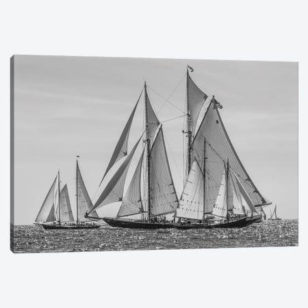 USA, Massachusetts, Cape Ann, Gloucester. Gloucester Schooner Festival, schooner parade of sail. Canvas Print #WBI215} by Walter Bibikow Canvas Wall Art
