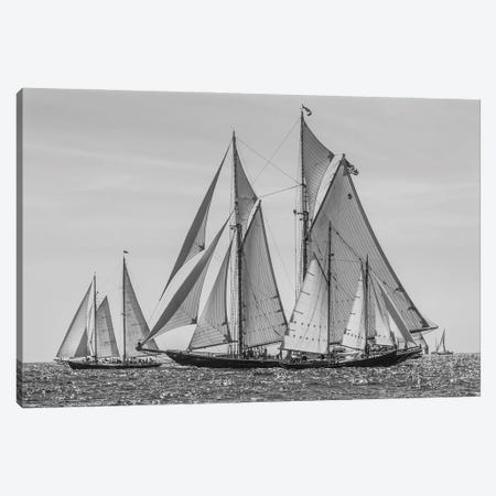 USA, Massachusetts, Cape Ann, Gloucester. Gloucester Schooner Festival, schooner parade of sail. Canvas Print #WBI215} by Walter Bibikow Canvas Wall Art