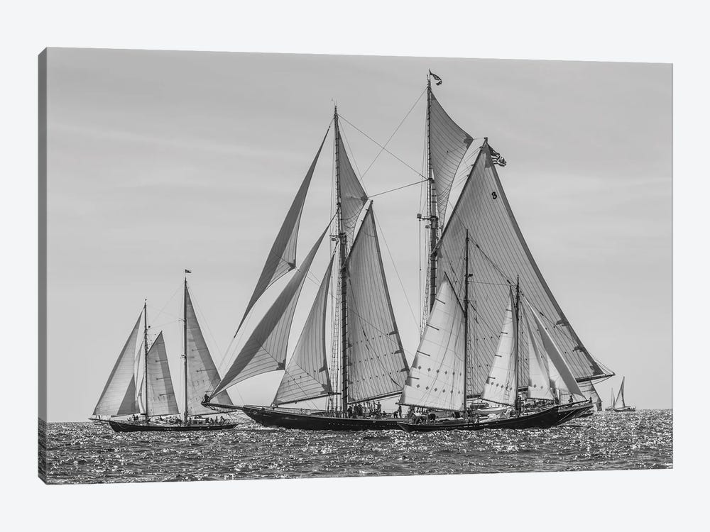 USA, Massachusetts, Cape Ann, Gloucester. Gloucester Schooner Festival, schooner parade of sail. by Walter Bibikow 1-piece Canvas Wall Art