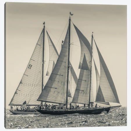 USA, Massachusetts, Cape Ann, Gloucester. Gloucester Schooner Festival, schooner parade of sail. Canvas Print #WBI216} by Walter Bibikow Canvas Art