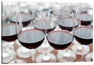 Glasses Of Wine, Bodega Marques de Riscal, Elciego, Alava Province, Basque Country, Spain Canvas Print #WBI21