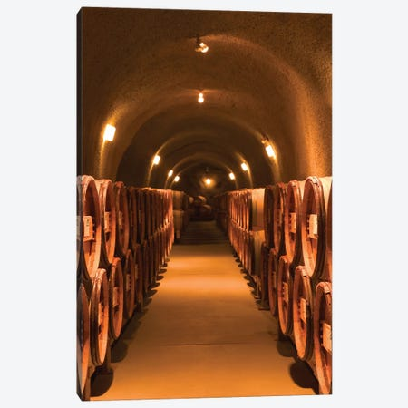 Winery Cask Room, Pine Ridge Vineyards, Napa Valley AVA, California, USA Canvas Print #WBI33} by Walter Bibikow Canvas Art