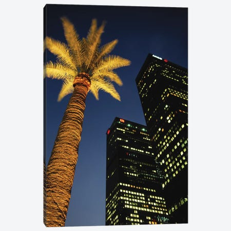 Low-Angle View Of An Illuminated Palm Tree, Los Angeles, California, USA Canvas Print #WBI40} by Walter Bibikow Canvas Art Print