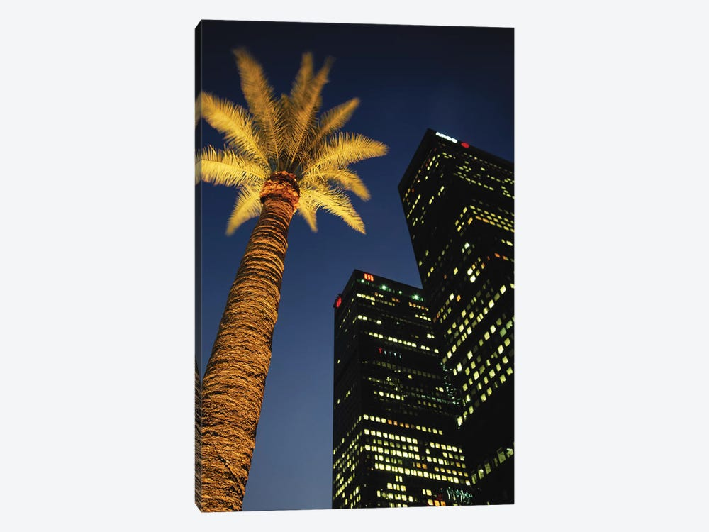 Low-Angle View Of An Illuminated Palm Tree, Los Angeles, California, USA by Walter Bibikow 1-piece Canvas Wall Art