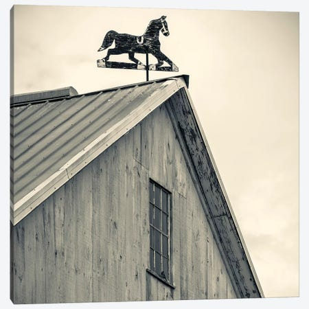 Workhorse Weather Vane, Bird-In-Hand, Lancaster County, Pennsylvania Dutch Country, Pennsylvania, USA Canvas Print #WBI73} by Walter Bibikow Canvas Art
