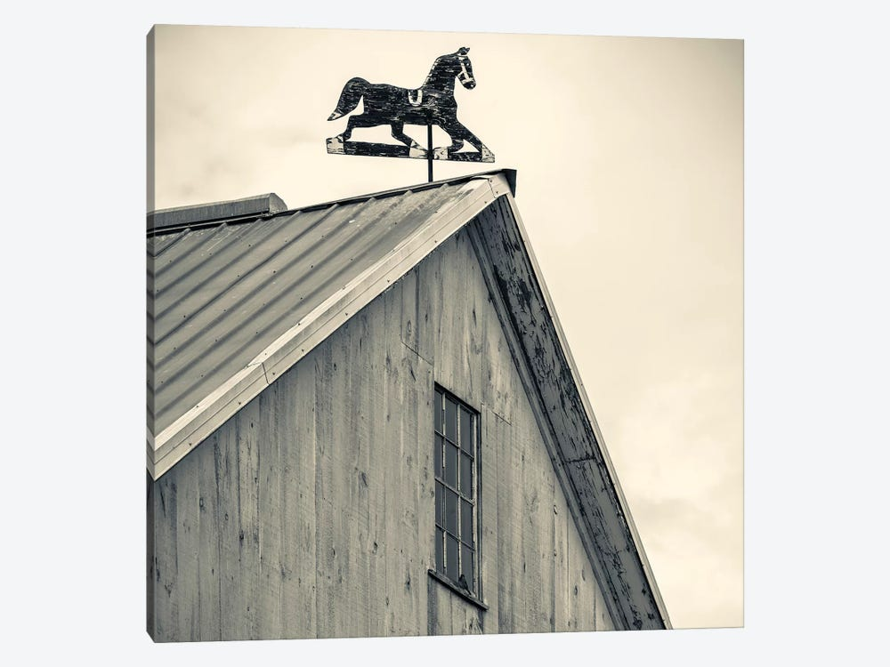 Workhorse Weather Vane, Bird-In-Hand, Lancaster County, Pennsylvania Dutch Country, Pennsylvania, USA by Walter Bibikow 1-piece Canvas Art