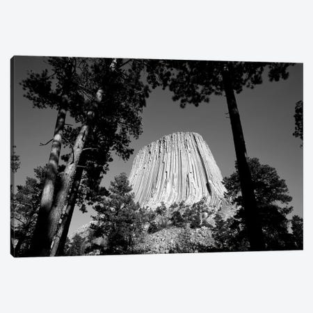 Low View Of Devils Tower (Bear Lodge Butte or Matho Thipila) At Dusk, Devils Tower National Monument, Crook County, Wyoming, USA Canvas Print #WBI81} by Walter Bibikow Art Print