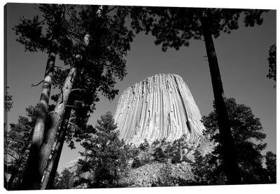 Low View Of Devils Tower (Bear Lodge Butte or Matho Thipila) At Dusk, Devils Tower National Monument, Crook County, Wyoming, USA Canvas Art Print