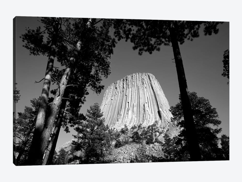 Low View Of Devils Tower (Bear Lodge Butte or Matho Thipila) At Dusk, Devils Tower National Monument, Crook County, Wyoming, USA by Walter Bibikow 1-piece Canvas Art Print