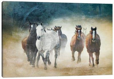 Dust Devils Canvas Art Print