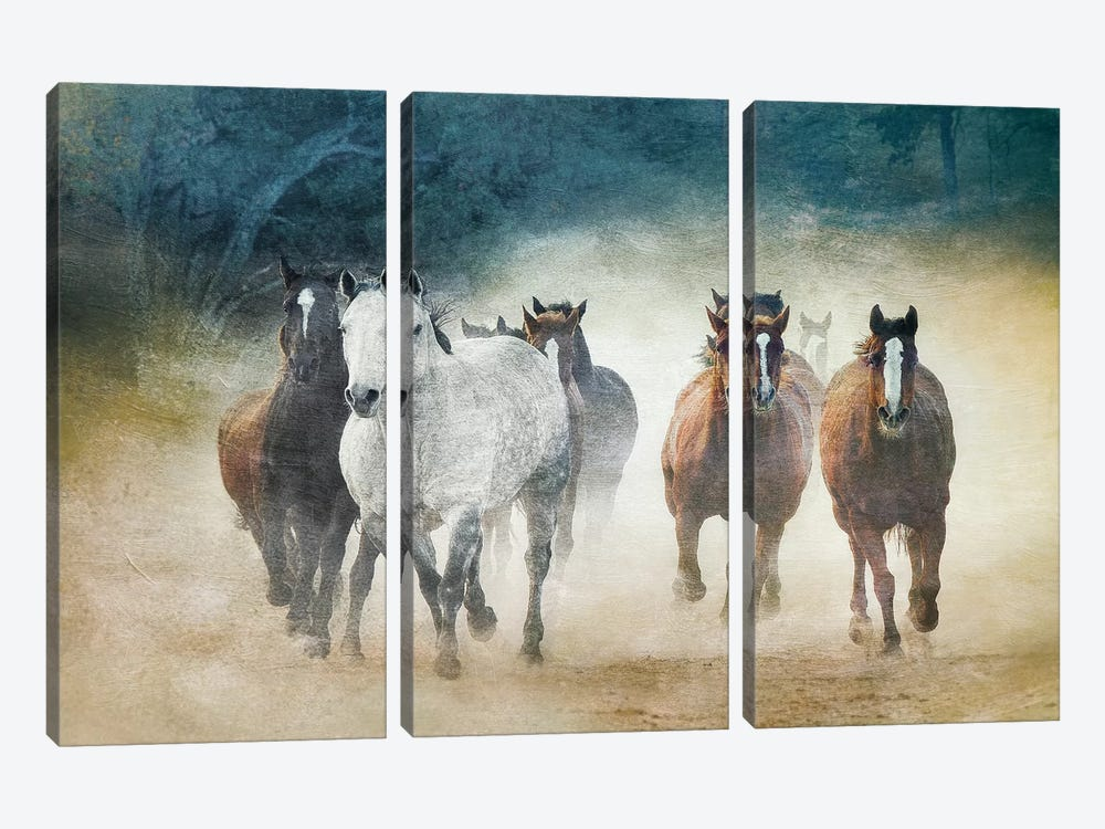 Dust Devils by Wendy Caro 3-piece Canvas Art