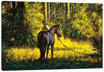 Horse And Egret Canvas Art Print