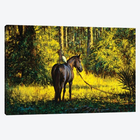 Horse And Egret 3-Piece Canvas #WCO10} by Wil Cormier Art Print