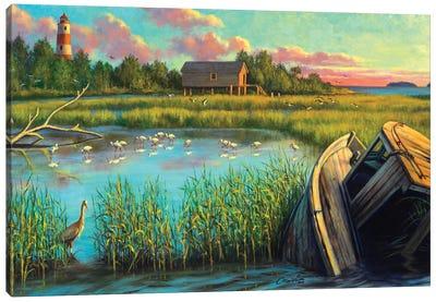 Laughing Gull Creek Canvas Art Print