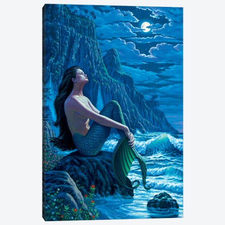 Serenity Canvas Print #WCO30} by Wil Cormier Canvas Art Print