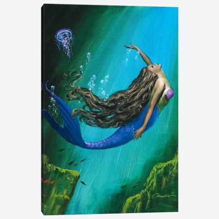 Enchantment Canvas Print #WCO8} by Wil Cormier Canvas Print