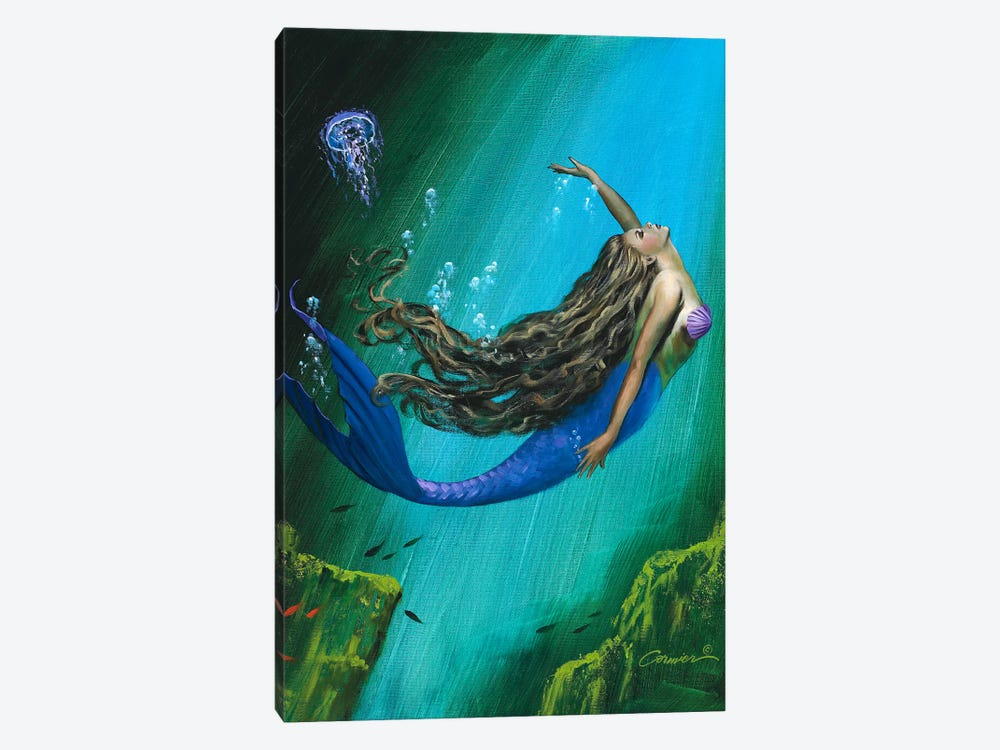 Enchantment by Wil Cormier 1-piece Canvas Artwork