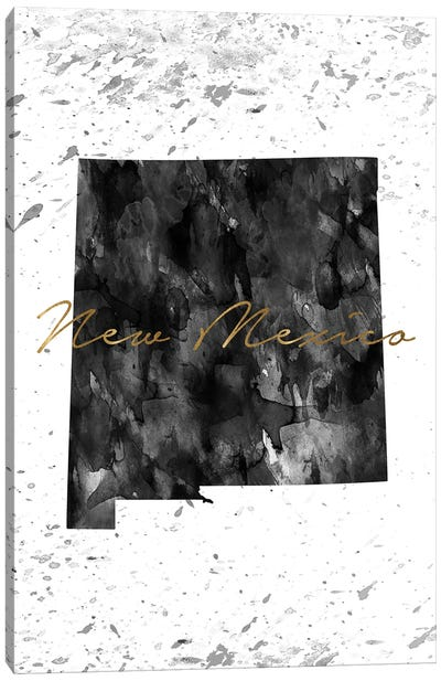 New Mexico Black And White Gold Canvas Art Print