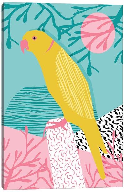 Birdbrain Canvas Art Print