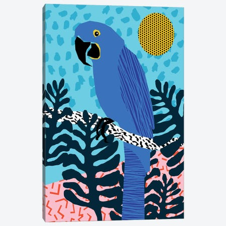 Steaz Canvas Print #WDE77} by Wacka Designs Canvas Art Print