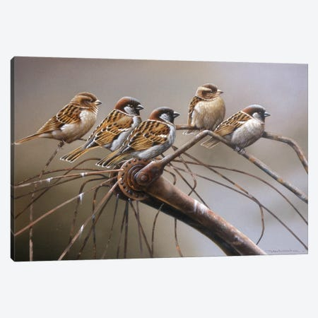 Birds On A Broken Bicycle Canvas Print #WEE11} by Jan Weenink Canvas Print