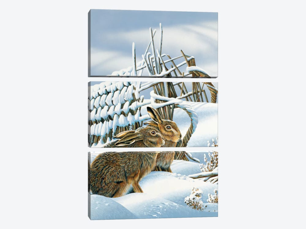 Bunnies In The Snow by Jan Weenink 3-piece Canvas Art Print