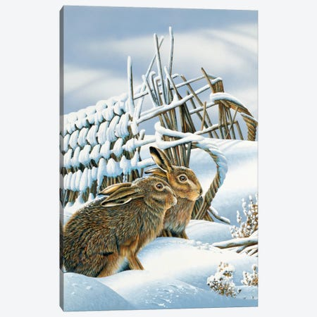 Bunnies In The Snow Canvas Print #WEE12} by Jan Weenink Art Print