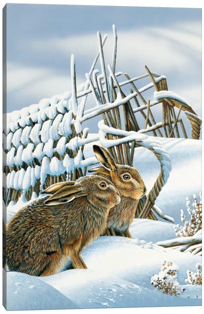 Bunnies In The Snow Canvas Art Print