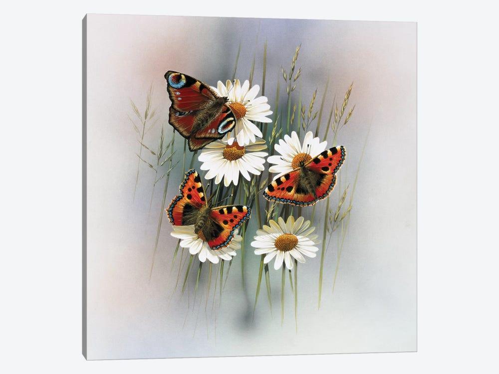 Butterflies by Jan Weenink 1-piece Canvas Art