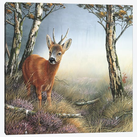 Deer In Forest Canvas Print #WEE16} by Jan Weenink Canvas Art