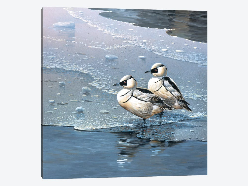 Ducks by Jan Weenink 1-piece Canvas Wall Art