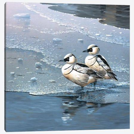 Ducks Canvas Print #WEE17} by Jan Weenink Canvas Wall Art