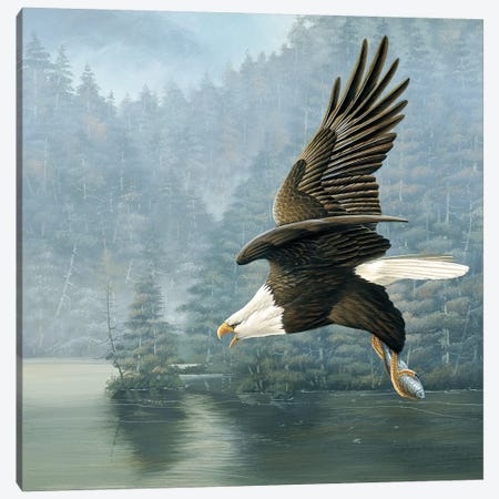 Flying Eagle Canvas Print #WEE18} by Jan Weenink Art Print