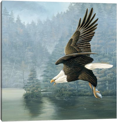 Flying Eagle Canvas Art Print